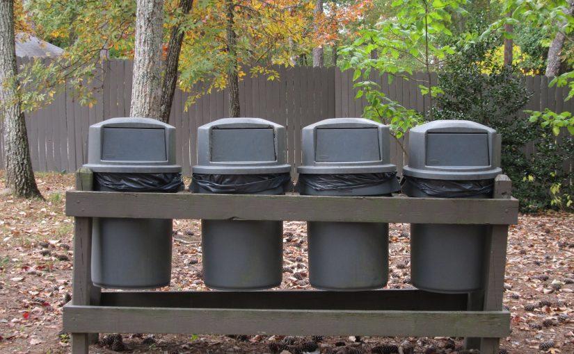 Goedkope vuilnisbakken: het Kiezen van de Juiste Kat Voor Uw Behoeften
